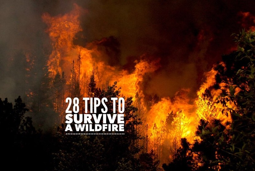 tips to survive a wildfire